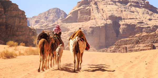 Jordan & Israel Tours, couples and trip a deal holiday experience
