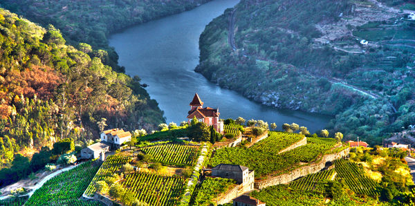 River Cruise on Douro River